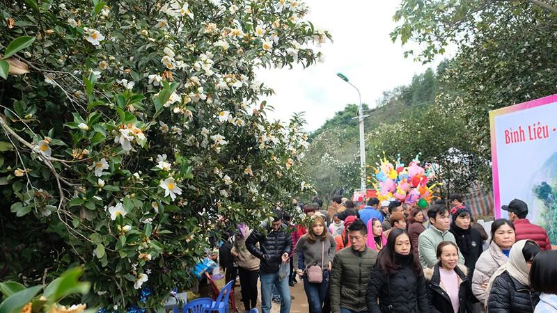 Lễ hội hoa sở Bình Liêu 2020