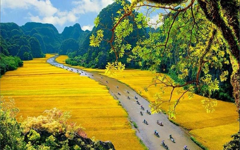 Các điểm du lịch Việt Nam nổi tiếng 6