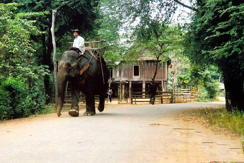 điểm du lịch Việt Nam nổi tiếng Đak Lak