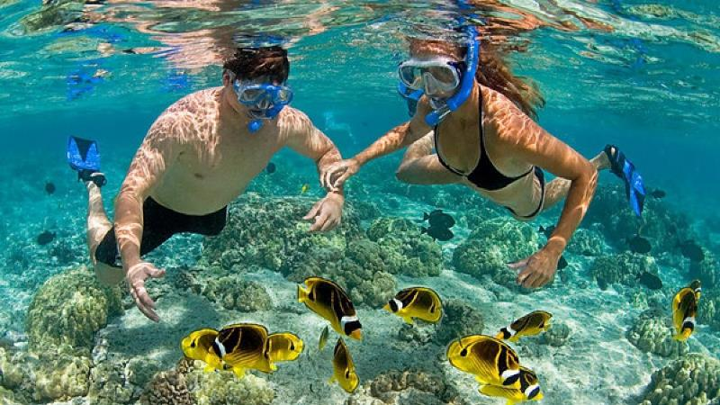 Hoạt động du lịch Nha Trang sinh thái